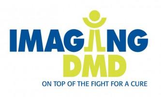 Imaging DMD