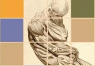 Wellstone Muscular Dystrophy